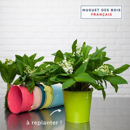 Muguet vase coloré